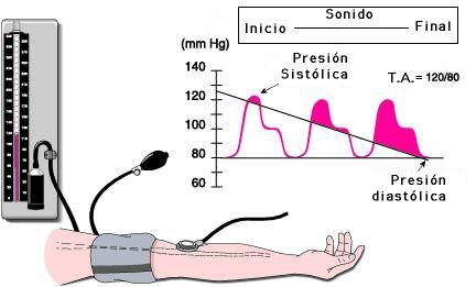 Presión arterial masculina 135/85